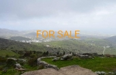7014, Almost 4 acres for sale on the mountainside of Lefkes... with an amazing view!