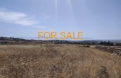 8014, 12,000 square meters of land for sale at Tzanes - with views