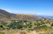 8017, 2 acres with unbelievable views and vineyard in Lefkes