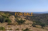 9027, Own your own olive grove in Lefkes, with a view of the mountains and the Byzantine path!