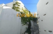 10103, Charming house in the center of Lefkes