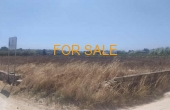 10110, Golden Beach land... builds 230 square meters!