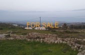 14006, 5,200 square meters of land in Lefkes, with views