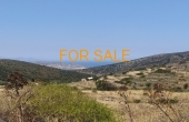 13009, 4,600 square meter land in Aneratzi with views