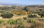 1203, Own your own mountain in Lefkes!