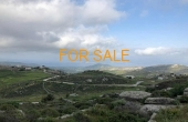 2014, Smart investment opportunity - 1.3 acres of land, with a lot of potential